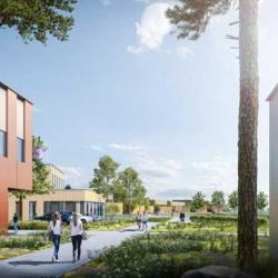 Vente Local d'activités Tremblay-en-France 25974 m²