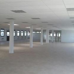 Location Bureau Argenteuil 339 m²