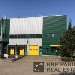 Location Entrepôt Hœrdt 1304 m²