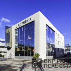 Location Bureau Montpellier 499 m²