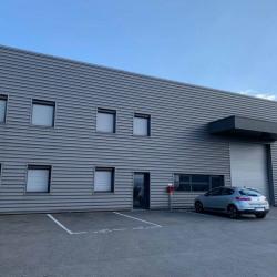 Location Local d'activités Chasse-sur-Rhône 614 m²