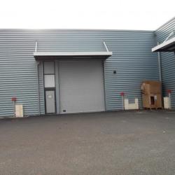 Location Local d'activités Échirolles 1052 m²
