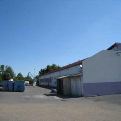 Location Local d'activités Montigny-lès-Cormeilles 470 m²