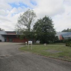 Location Local d'activités Schweighouse-sur-Moder 6056 m²