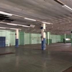 Location Local d'activités Montigny-le-Bretonneux 16263 m²
