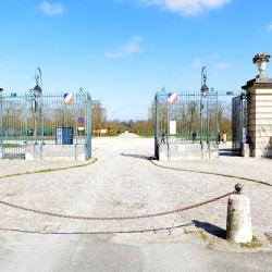 Location Bureau Saint-Germain-en-Laye 220 m²