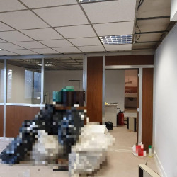 Location Bureau Ivry-sur-Seine 66 m²