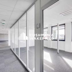 Location Bureau Cagnes-sur-Mer 1310 m²