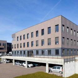 Vente Bureau Limonest 8761 m²