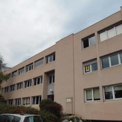 Location Bureau Saint-Martin-d'Hères 836 m²