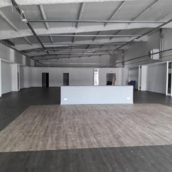 Location Local commercial Brie-Comte-Robert 533 m²