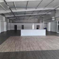 Vente Local commercial Brie-Comte-Robert 533 m²