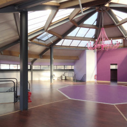 Location Local d'activités Tournon 600 m²