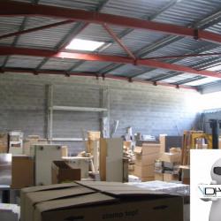Location Local d'activités Saint-Martin-de-Seignanx 350 m²