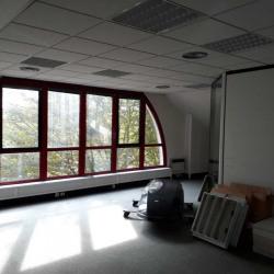 Location Bureau Les Ulis 60 m²