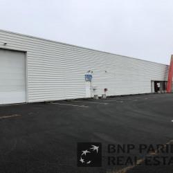 Location Local d'activités Saint-Lumine-de-Clisson 1535 m²