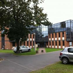 Location Bureau Lambersart 103 m²