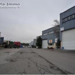 Location Entrepôt Limeil-Brévannes 1000 m²