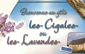 gite LES LAVANDES à PORTBAIL - Portbail