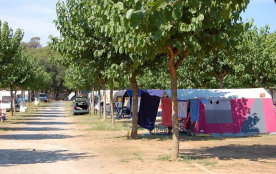 Camping Mas Patoxas, 500 emplacements, 250 locatifs