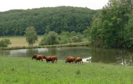 Maison bois  3***- Pêche privé au Lac - WIFI- Rando - Pleine nature-