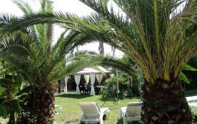 jardin- palmeraie - repos