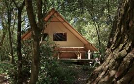 Flower Camping des Pins, 70 emplacements, 80 locatifs