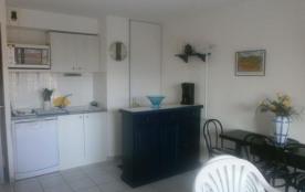 FR-1-309-39 - Banyuls-sur-mer, Appartement 2 pièces proche centre