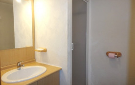 La salle d'eau (lavabo et douche)