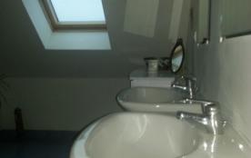 double vasque