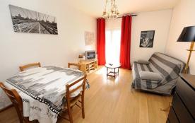 Appartement F2 - 56 m² - 6 personnes - catégorie 5 - balcon - vue sur pistes.