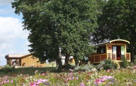 Domaine des Cadets de Gascogne roulottes et cabanes / chalets