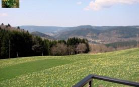 Vacances au calme dans les Vosges - Gerbamont