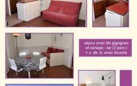 Studio 42 Chamois