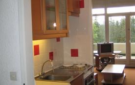 Apartment à VILLARD DE LANS