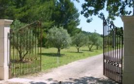 La Bastide de Messine *B&B de charme en Provence*