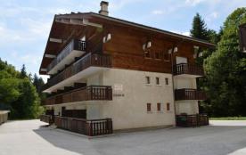 Studio de 22 m² environ pour 4 personnes, la résidence Castel des Neiges B est située au pied des...