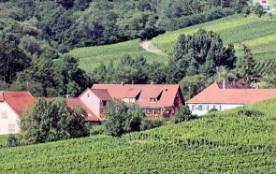 Gite 150 m2 avec vue panoramique sur le vignoble alsacien entre Strasbourg et Colmar - Nothalten