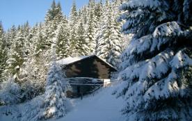 Chalet situé à Les Carroz d'Arraches