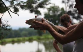 Belle prise assurée avec la pêche à l'étang au Masbareau, Royères Haute-Vienne