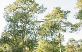Village Naturéo, 400 locatifs
