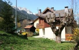 Chamonix Coeur Des Alpes