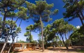 PuntAla Camp & Resort, 350 emplacements, 172 locatifs