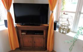 Téléviseur HD 100cm