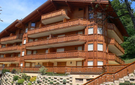 Appartement pour 4 personnes à Gryon