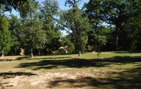 Le parc et la cabane dans les arbres pour les enfants