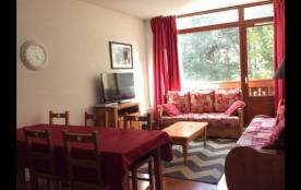 Appartement 56 m2 - 6 à 8 personnes ( Les 2 Alpes) au pied des remontées mécaniques