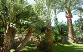 Jardin exotique de la résidence.