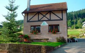 Chez Bri'Gite - Petite Suisse d'Alsace - Wangenbourg