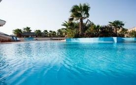 Les pieds dans l'eau, entre soleil et Méditerranée...